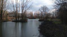 Thorney lakes 3/2/15