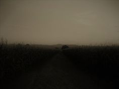 Night Thoughts Photograph by Martina Rall