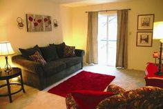 Cute apartment living room.