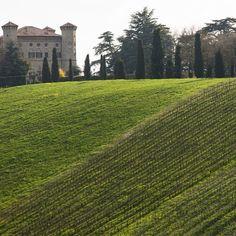 """Castello """"Il più bello"""" Puianello, sulle prime colline di Reggio Emilia - Instagram by leonedelpo"""