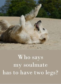 Who says my soulmate has to have two legs?