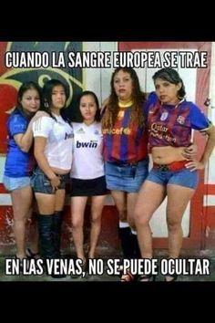 Memes graciosos: Pura sangre europea → #memesdivertidos #memesenespañol…