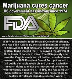 But Big Pharma is counting on you to give them your money so marijuana will not be reseached further and there will not be any cancer cures coming along from Big Pharma. They are counting on us being sick and staying sick.