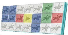 A galope Google recuerda con un doodle los orígenes de la fotografía en movimiento