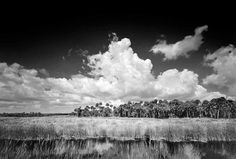 Photographic Story Big Cypress National Preserve, Florida – This photograph was one of the first photographs I took after my son was killed by a drunk driver. I really wanted a good shot of the grassy plains to express the feeling I had about the Everglades. The photograph was taken along Tamiami Trail. It was …