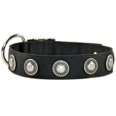 Silver plated conchos decorate this durable, high quality nylon dog collar. Weather resistant. For medium to large dogs.
