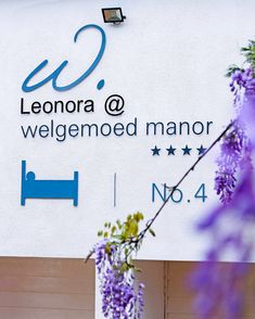 Whether your visit is for business or pleasure, your needs will be catered for in a friendly, competent and unobtrusive way. We are lovers of art and we also have a bespoke garden whom we are very proud of. 4 Kommissaris Street Welgemoed •021 913 2205 •leonora@welgemoed.co.za #leonoraatwelgemoedmanor #accommodation #travel #amazing #luxury #summer #holidays #tourism Cape Town Accommodation, Bespoke, South Africa, Tourism, Home And Garden, Lovers, Holidays, Luxury, Street