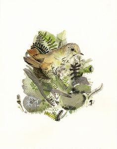 Hermit Thrush Original Painting  bird art bird by amberalexander