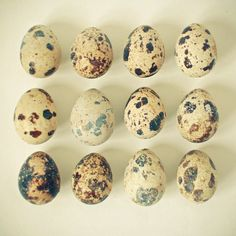 Poster | QUAIL EGGS von Cassia Beck | more posters at http://moreposter.de
