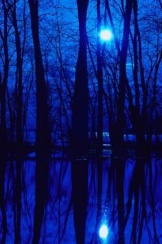 I'll never be blue.My dreams come true.On Blue Bayou Blue Dream, Love Blue, Foto Nature, Cool Winter, Blue Aesthetic Dark, Everything Is Blue, Foto Art, Blue Wallpapers, Blue Moon