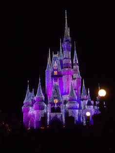 Picture I took of Cinderella's castle at night. #disneyworld
