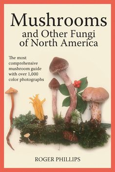 Mushrooms and Other Fungi of North America by Roger Phillips For amateur collectors or professional mycologists working in the field, this guidebook is quite simply the best North American mushroom reference ever published. Garden Mushrooms, Edible Mushrooms, Growing Mushrooms, Wild Mushrooms, Stuffed Mushrooms, Mushroom Guide, Edible Wild Plants, Mushroom Hunting, Mushroom Fungi
