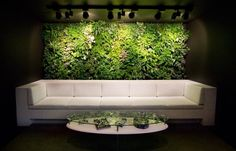 Aww man what I wouldn't give for one of these.  A friend of mine has a green wall that is fully self supporting because of the built in filtration that recycles shower water and feeds the plants
