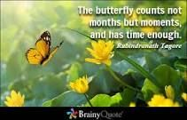 https://www.brainyquote.com/quotes/keywords/butterfly.html