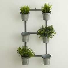 You'll love the Galvanized Wall Planter at Birch Lane - With Great Deals on all products and Free Shipping on most stuff, even the big stuff.