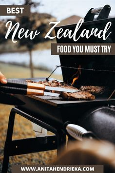 Here are 37 different New Zealand food you must try on your trip to New Zealand. From traditional Maori meals, delicious kiwi desserts, new Zealand dishes, New Zealand recipes, New Zealand drink, afghan biscuits, raspberry slice, pavlova, hangi, and other traditional new zealand food #newzealandcuisine