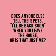 36 Funny Quotes And Sayings. Single Mom Meme Ideas of Single Mom Meme - Single Mom Ideas - Ideas of Single Mom Ideas - 36 Funny Quotes And Sayings. Single Mom Meme Ideas of Single Mom Meme 36 Funny Quotes And Sayings. Yorkies, Chihuahuas, Westies, Crazy Cat Lady, Crazy Cats, Crazy Dog, Lilo E Nani, Pet Sitter, Dog Mom