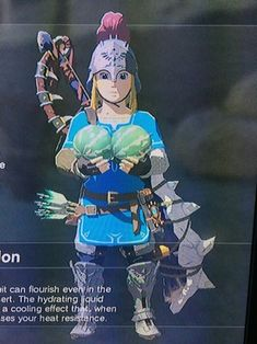 My friend got a switch for Christmas. I asked her how she was liking BotW, and she responded with this.