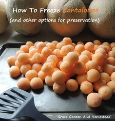 How to freeze cantaloupe and other tips for preserving your melon.
