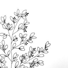 Creating botanical line drawings and doodles is a new favorite hobby for me. Botanical Line Drawing, Floral Drawing, Drawing Flowers, Botanical Drawings, Illustration Blume, Botanical Illustration, Doodle Drawings, Easy Drawings, Watercolor Flower