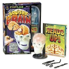 https://www.fatbraintoys.com/toy_companies/smartlab/the_amazing_squishy_brain.cfm