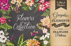 Hand-drawn flower collection