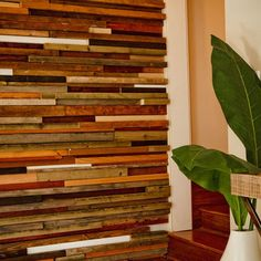Ecofriendly Accent Wall