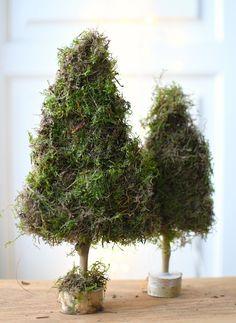 Kerstboompjes van mos maken Outdoor Christmas Decorations, Christmas Crafts, Merry Christmas, Christmas Feeling, Yule, Diys, Herbs, Seasons, Plants