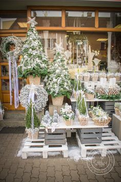 1 million+ Stunning Free Images to Use Anywhere Christmas Pops, Christmas Is Coming, Rustic Christmas, White Christmas, Christmas Wreaths, Christmas Crafts, Christmas Decorations, Xmas, Christmas Tree Village Display