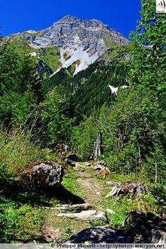 Piste forestière, Aiguille de Mey. Massif de la Vanoise (France, Auvergne-Rhône-Alpes, Savoie)