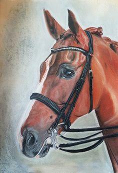 Dressage horse by RealKilljoy