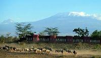 Start your Kilimanjaro safari adventure at an elegant lodge in the heart of Kenya's Amboseli National Park with uninterrupted views of Mount Kilimanjaro. Serena Hotel, Safari Holidays, Kenya Travel, Mount Kilimanjaro, Safari Adventure, Best Resorts, Game Reserve, African Safari, Tanzania