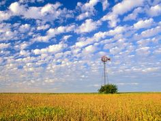 Country Field, Illinois - http://imashon.com/w/country-field-illinois.html