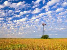 Country Field, Illinois - http://imashon.com/w/country-field-illinois.html