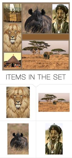 """Africa"" by lulurose98 ❤ liked on Polyvore featuring art"