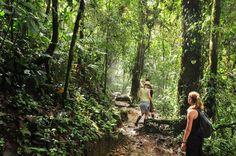 Avec nos potes, dans la jungle