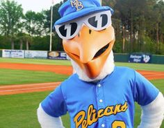 Myrtle Beach Pelicans Baseball - Grab a ballpark hot dog or delicious snack - or both - a refreshing drink, and swing into some baseball action and a great time!