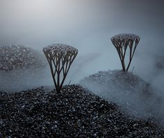 Print3d World. Blueberries: Joyas impresas en 3D. Colección diseñada por Markéta Richterová y Krulich Zbynek. Fotografías de Adela Havelková.
