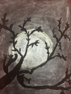 Chalk Hallow tree