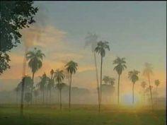 "A música de ""Pantanal"", ao vivo - Marcus Viana"
