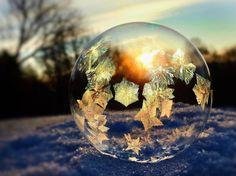 Papillons de lumière - L'incroyable délicatesse de cristaux de glace figés dans des bulles - ladepeche.fr