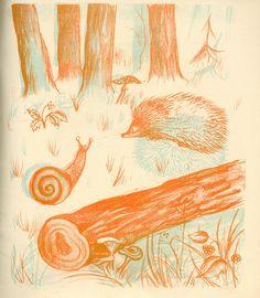Illustrations for Album Magique published by Flammarion. Children's Book Illustration, Illustrations, Animal Habitats, Album, Childrens Books, Creatures, Painting, Animals, Vintage