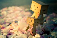 The Hope. There's also hope in Danbo's heart.