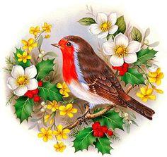 Wreath Watercolor, Watercolor Bird, Robin Drawing, 3. April, Decoupage, Victorian Illustration, Coloring Book Art, Christmas Bird, Lion Art
