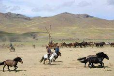 MONGOLIE - Voyage à cheval dans la Vallée de l'Orkhon par Randocheval