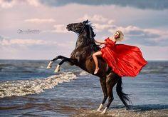 Instagram media by dixilarina - @Aleksashumilova 💋  #платье @august_van_der_walz ❤️ #конь @club_landysh❤️ #улыбка#конь#кони#лошадь#фотографспб#фотосессия#фотосессияслошадьми#пляж #финскийзалив #красота#девушка#блондинка#photoshootwithhorse#photographer#portrait#photoshoot#horse#life#like#dress#black#horse#blackhorse #dream#sunset#море #лето #спорт