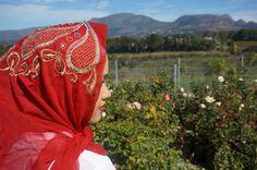Red Oriental Scarf Oriental, Sisters, Red, Blog, Blogging