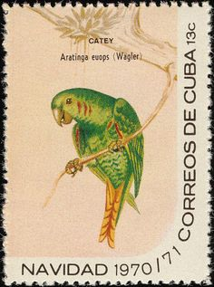 Cuban Parakeet stamps - mainly images - gallery format