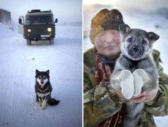 coldest village oymyakon russia amos chaple 2
