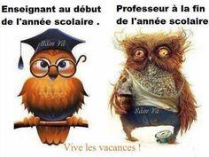 Les profs - Image drôle - Animaux